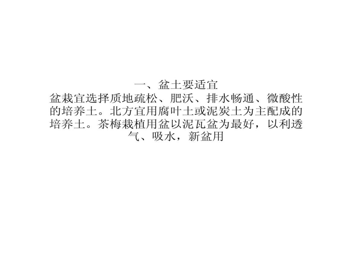 茶梅种植栽培技术要点.ppt