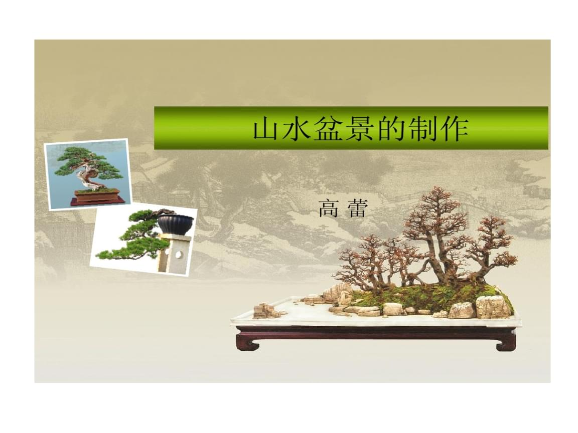 项目六 山水盆景制作.ppt