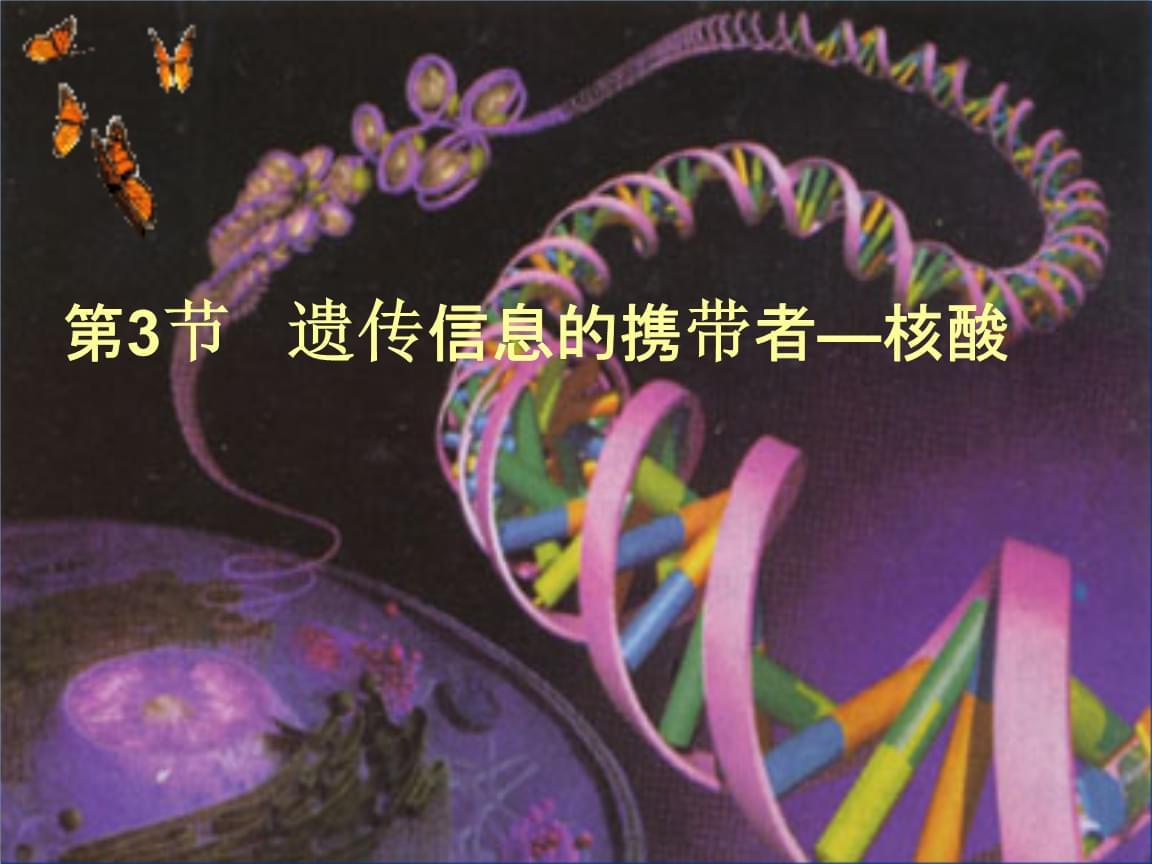 遗传信息的携带者---核酸83说课讲解.ppt