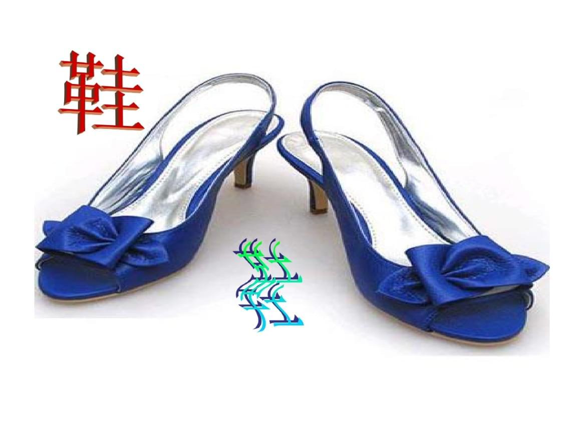 商品归类鞋子.ppt