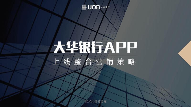 大华银行APP上线整合营销策略案.pptx.pdf