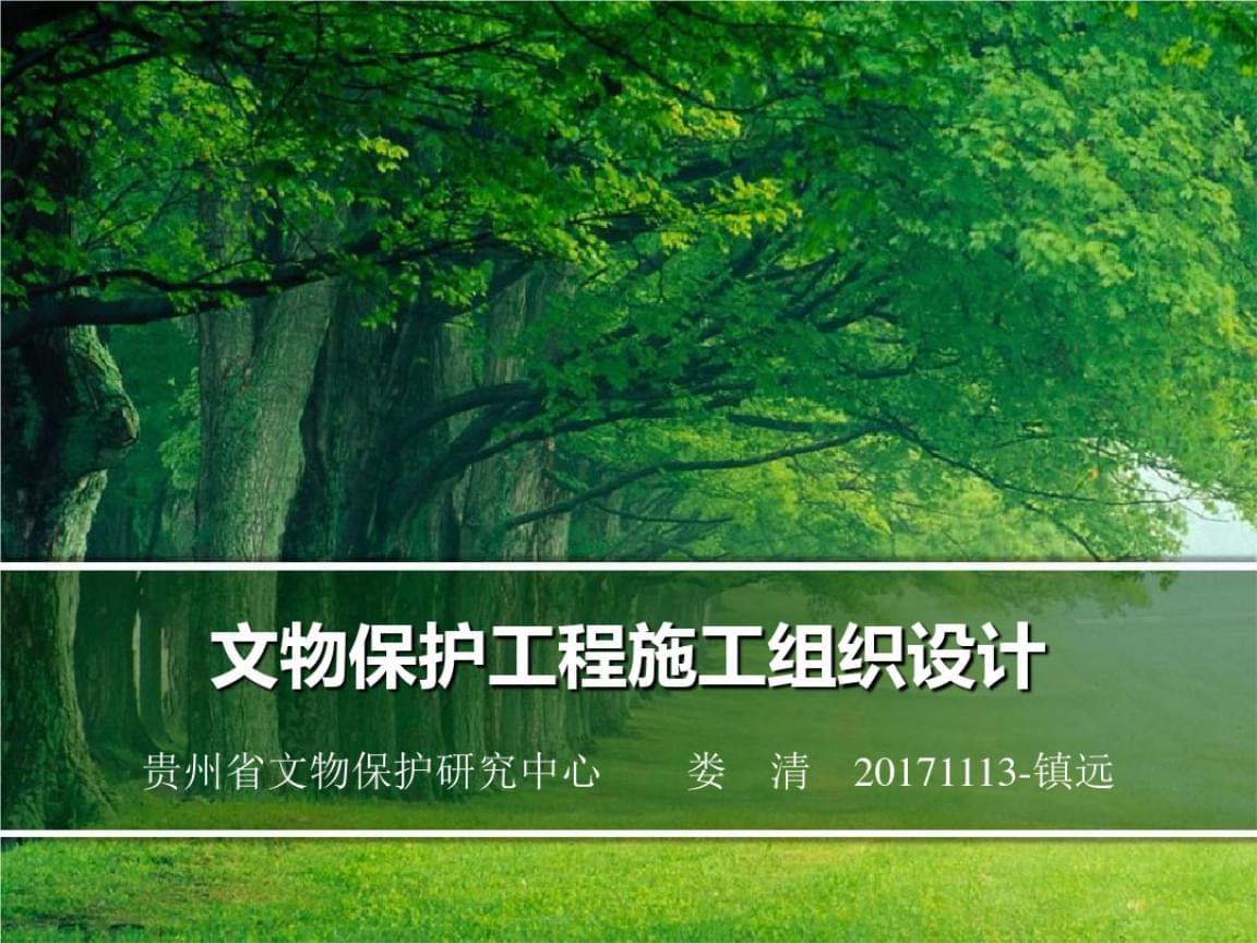 文物保护工程施工组织的设计.ppt