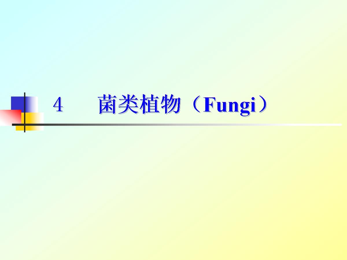 《菌类植物》Fungi2017课件.ppt