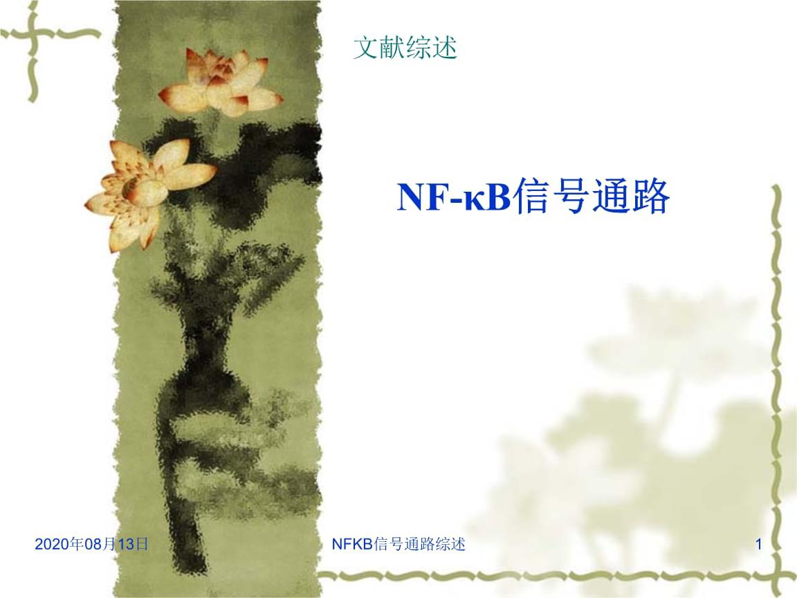 NFKB信号通路综述讲义.ppt