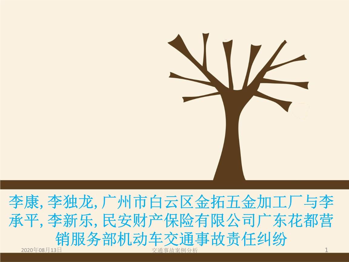 交通事故案例分析讲义.ppt