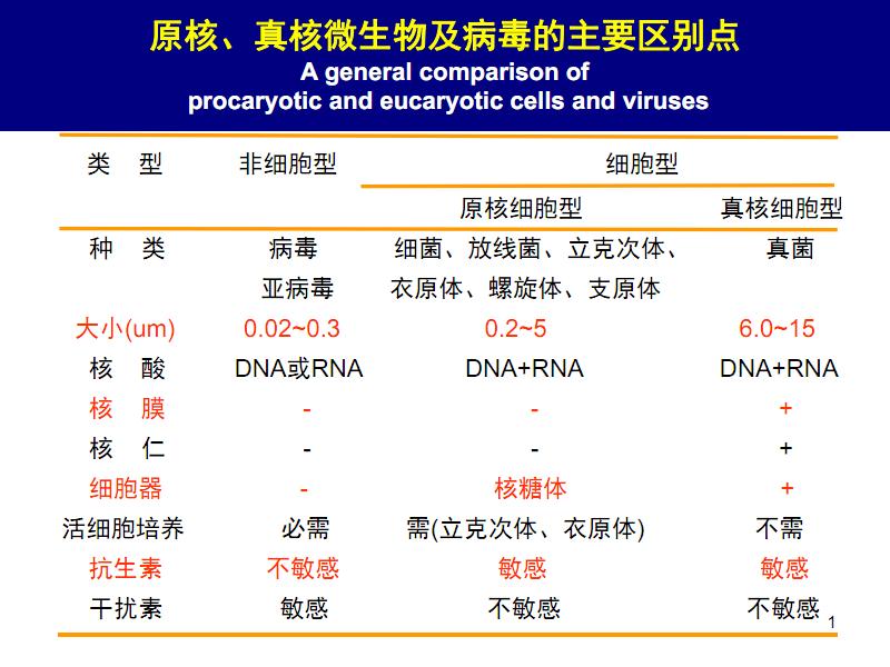 【北京大学-医学微生物学】_原核、真核微生物及病毒的主要区别点_20200425234134.pdf