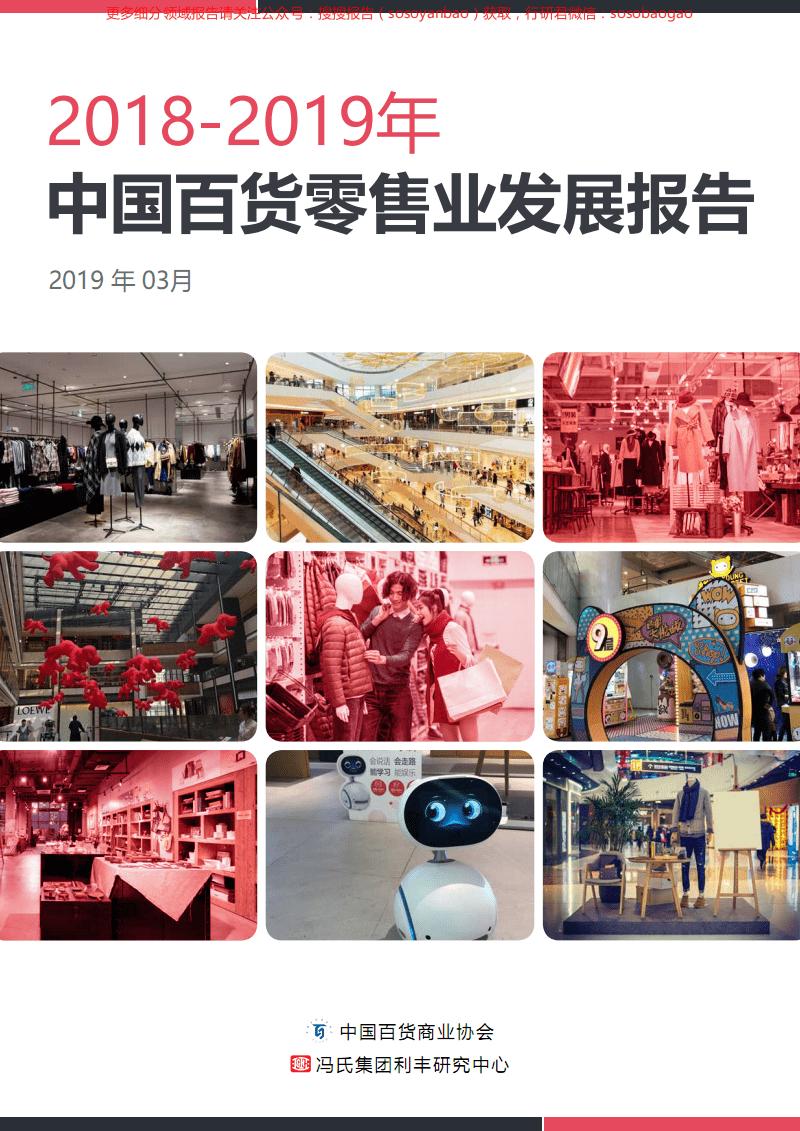 2018-2019年中国百货零售业发展报告 零售行业年报 零售行业年报.pdf