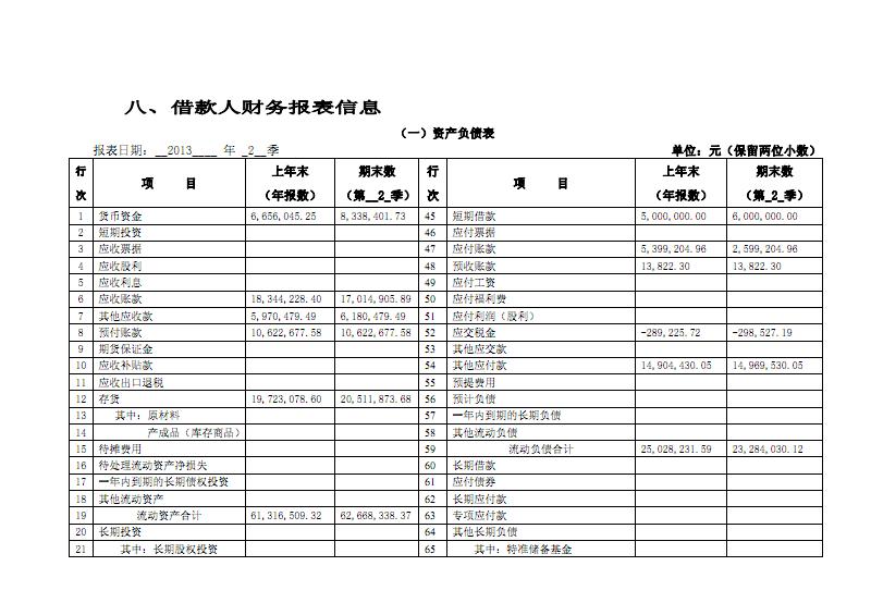 借款人财务报表信息.pdf