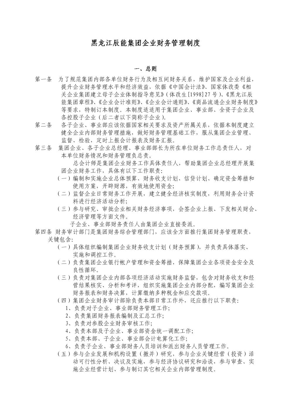黑龙江辰能集团公司财务管理新规制度.doc