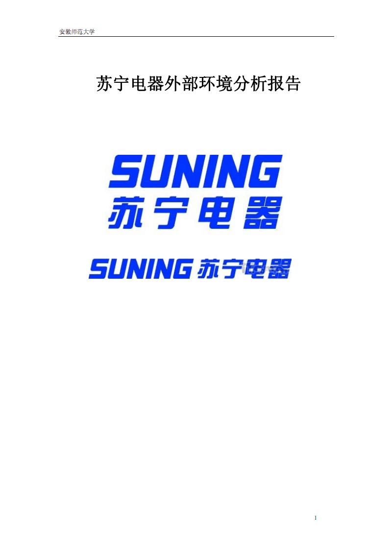 苏宁电器外部环境分析报告.pdf