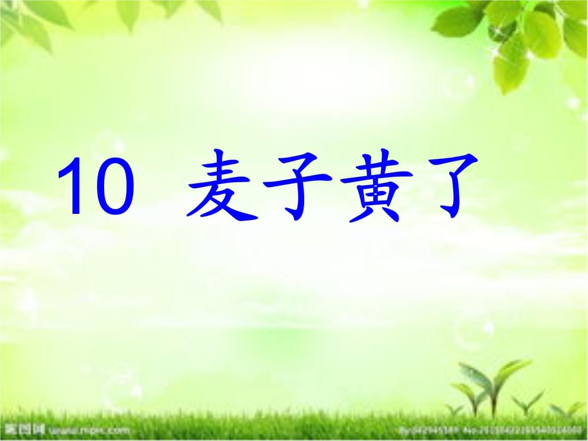 《麦子黄了》课件(2).ppt