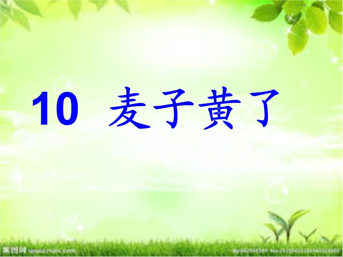 《麦子黄了》课件(3).ppt