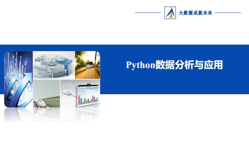 1.1 Python数据分析与应用.pdf