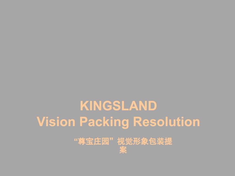 某楼盘视觉形象包装提案.pdf