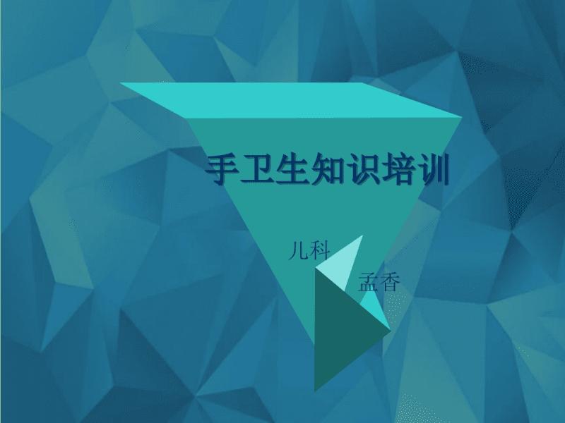 手卫生培训课件PPT.pdf