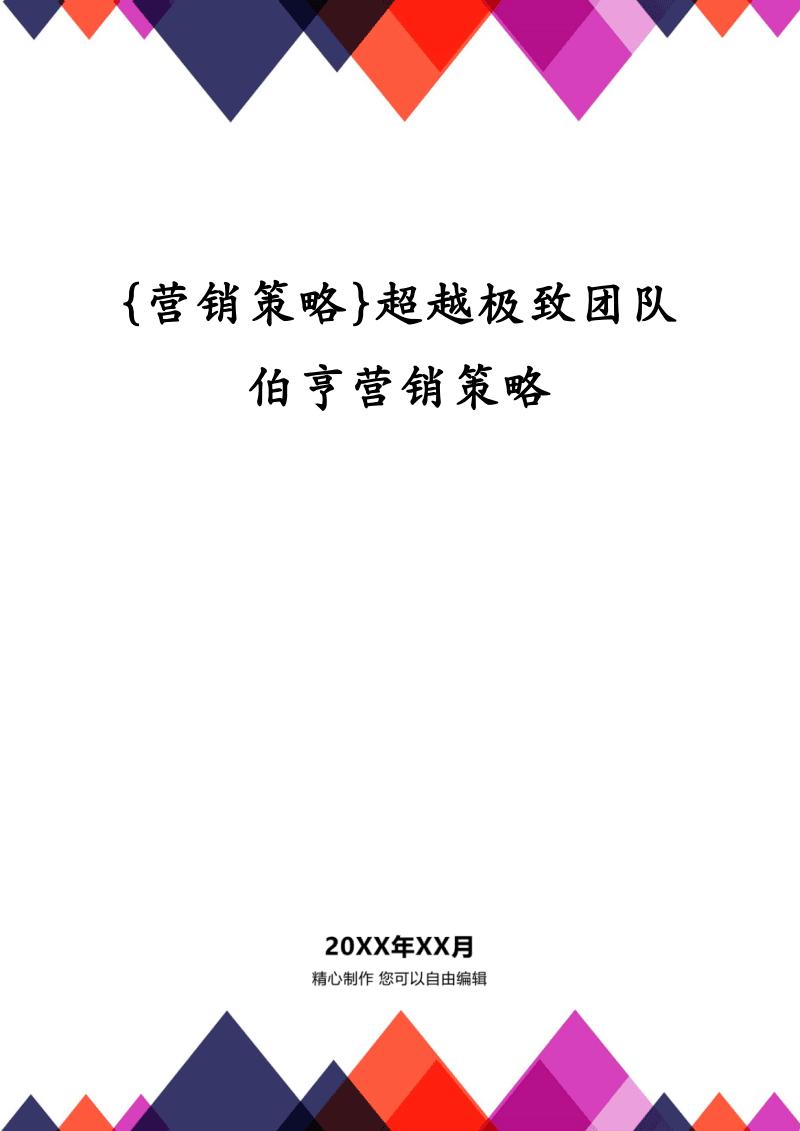 {营销策略}超越极致团队伯亨营销策略.pdf