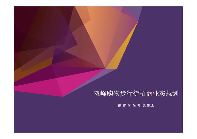 湖南双峰购物步行街招商业态规划.pdf