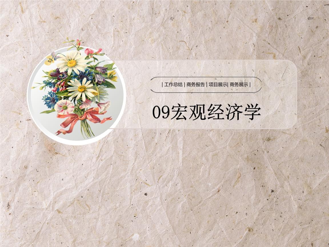 09宏林观经济学.ppt