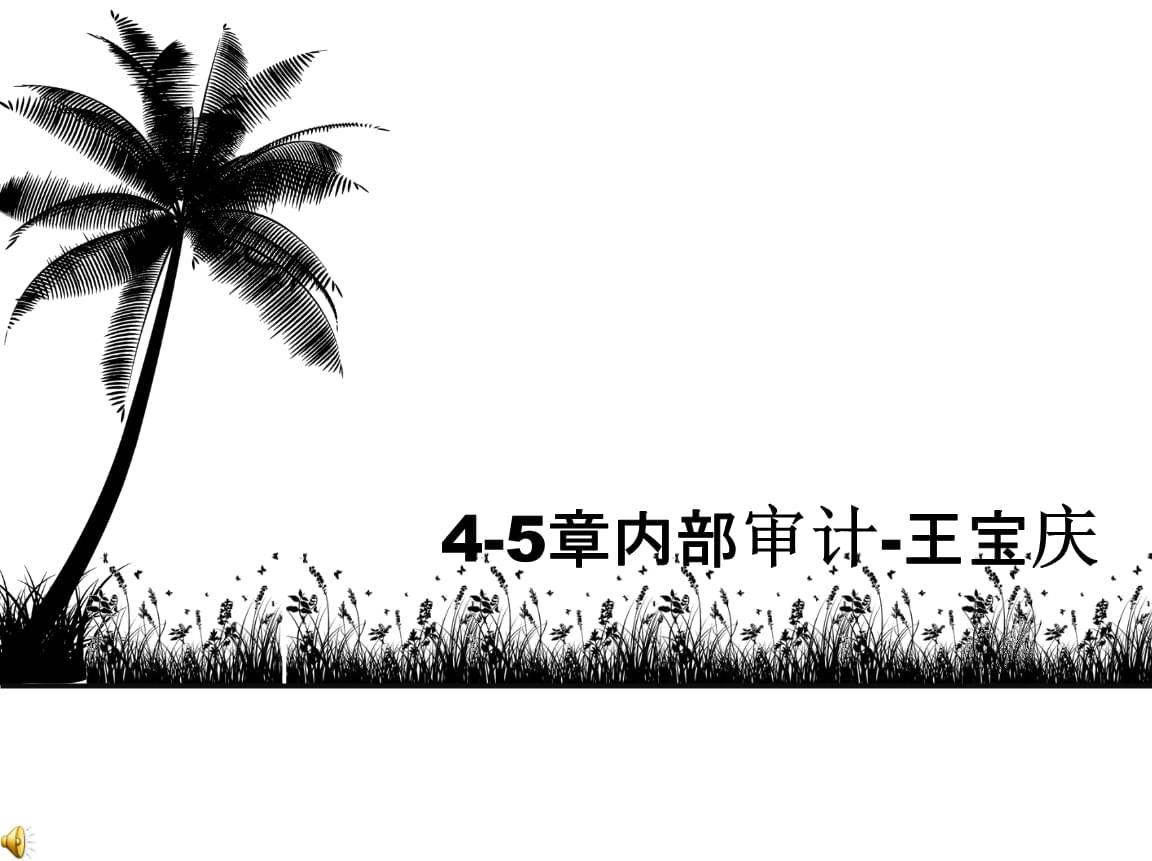 4-5章内部审计整-王宝庆.ppt