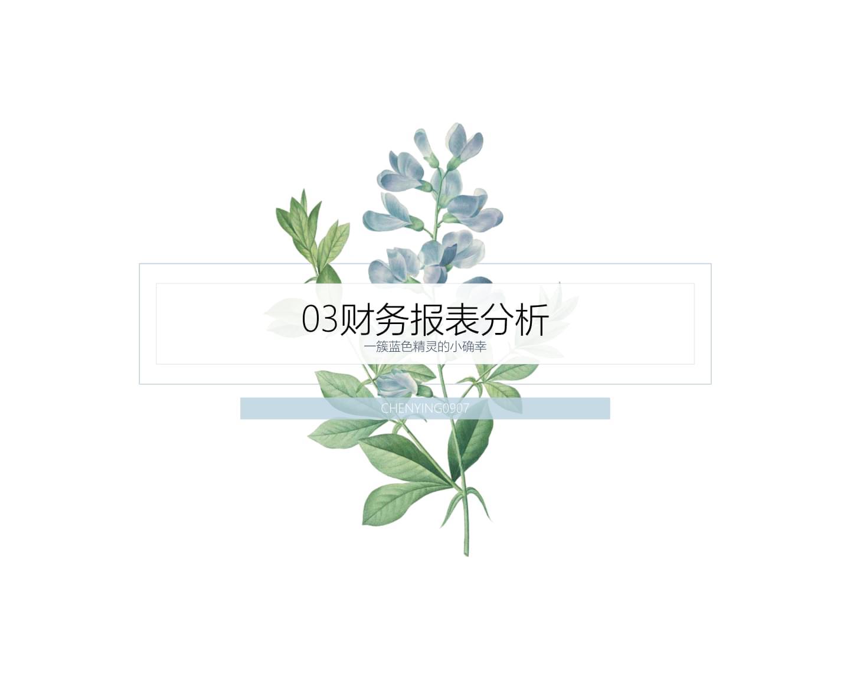 03财务报及表解析.ppt
