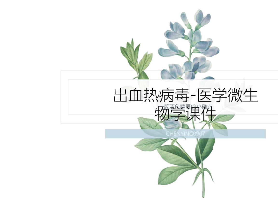 出血热病毒-医学体微生物学课件.ppt