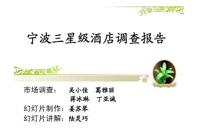 宁波三星级酒店调查报告.pdf
