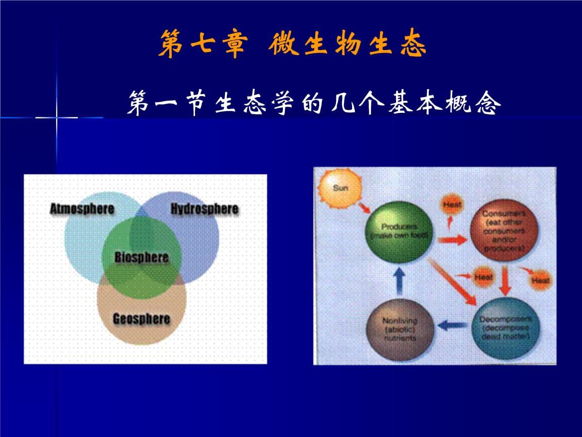 环境工程微生物学:第七章  微生物生态.ppt