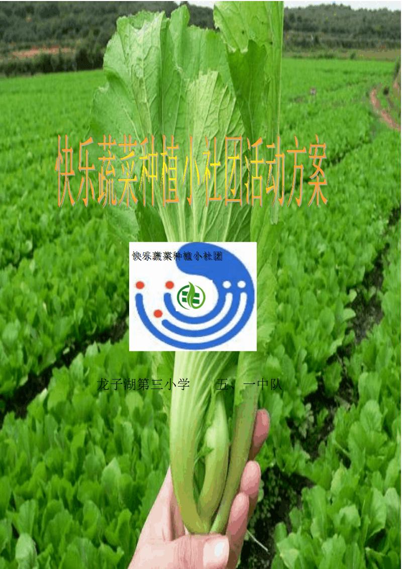 快乐蔬菜种植小社团活动方案.pdf