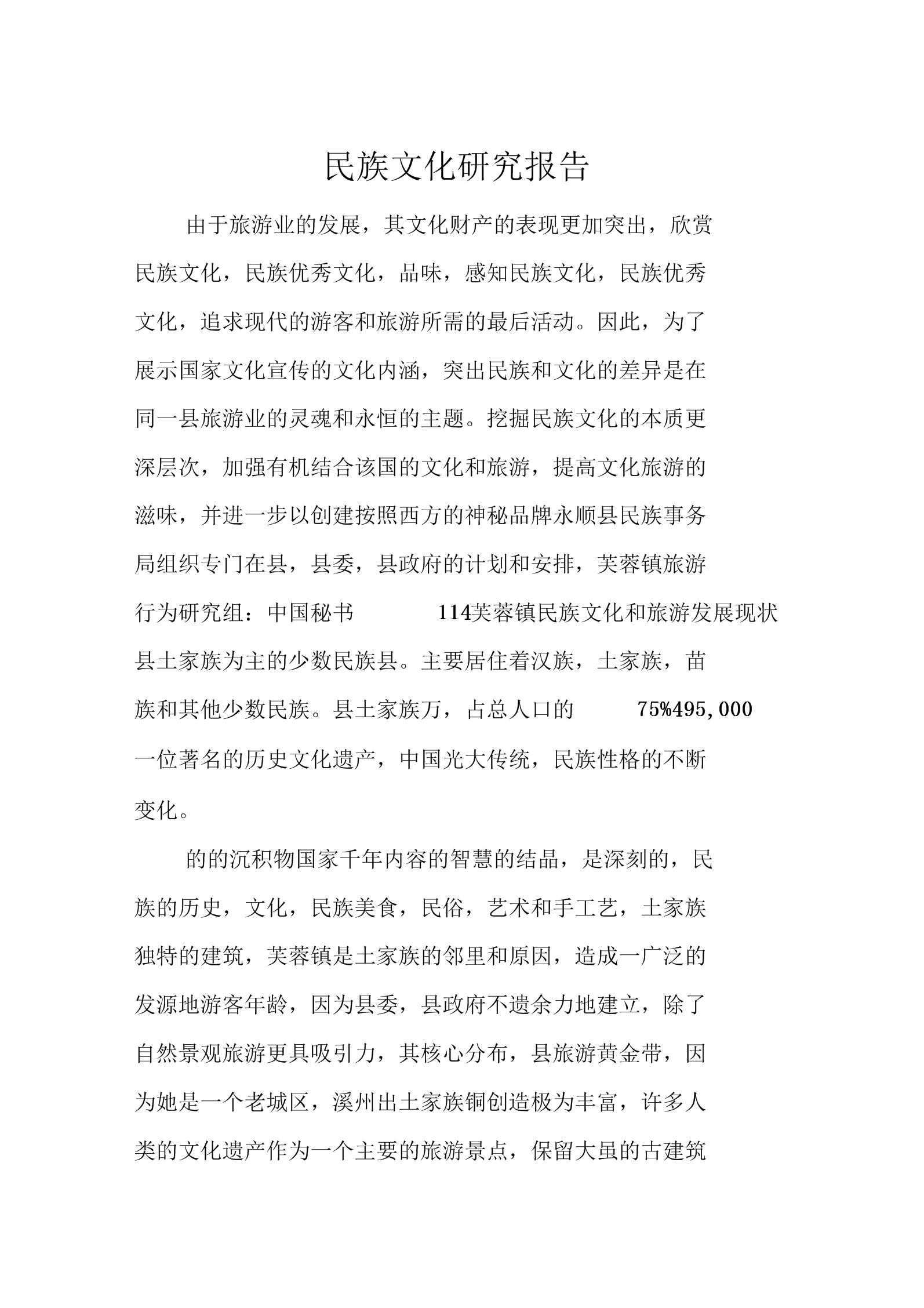 民族文化研究报告.docx