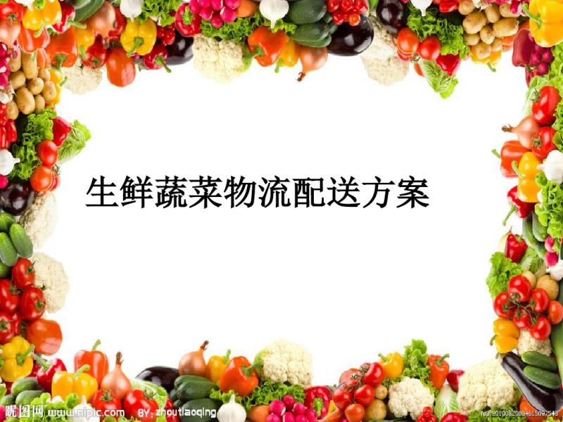 蔬菜物流配送方案.ppt.pdf