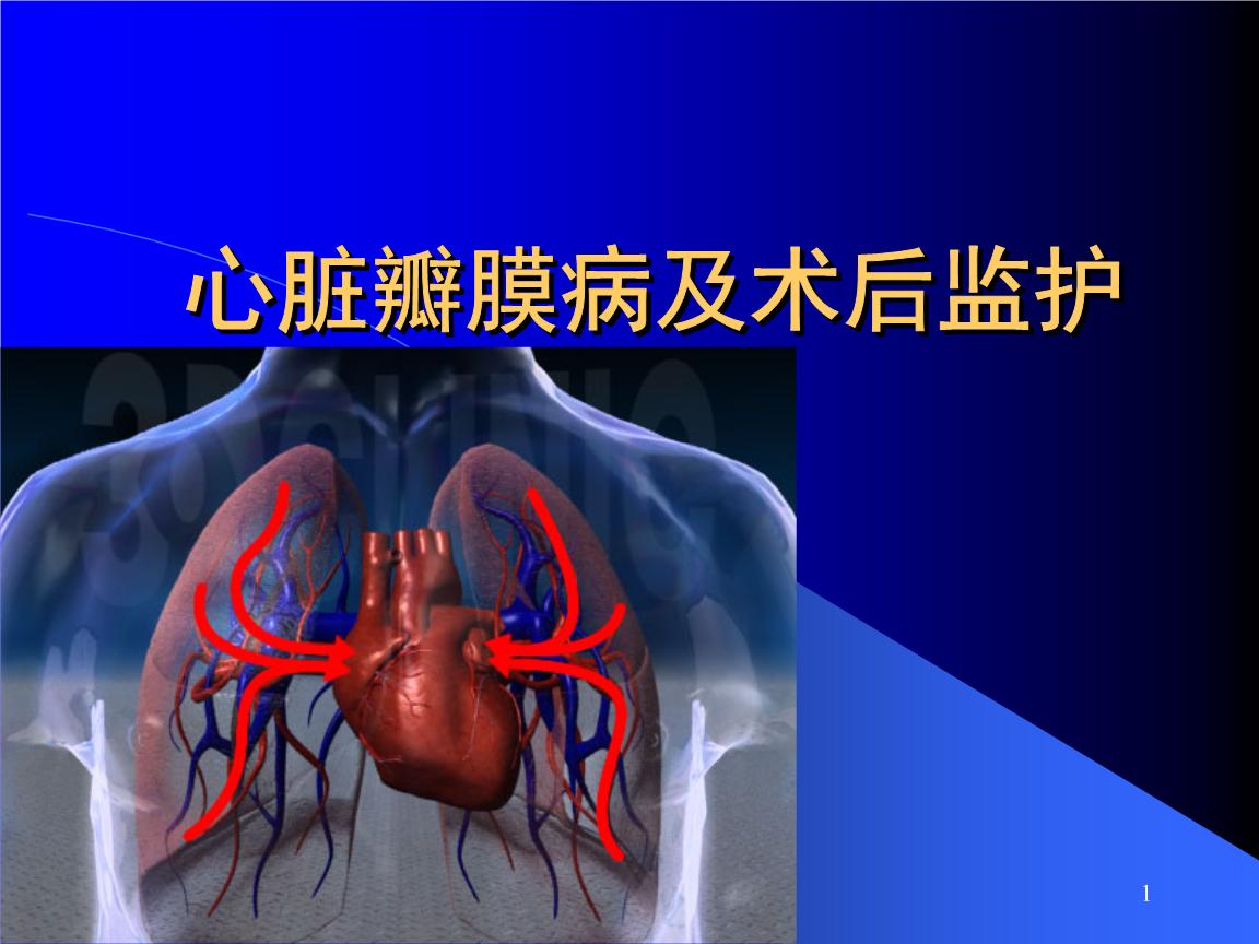 心脏瓣膜病及术后监护.ppt