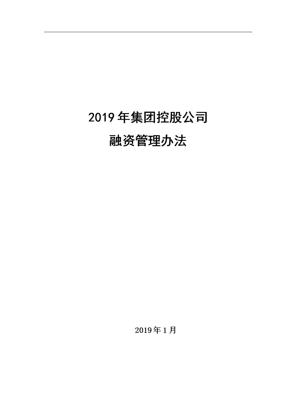 2019年集团公司融资管理制度.doc